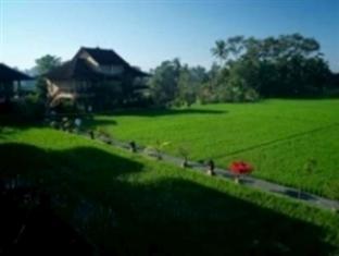 Sri Bungalows Ubud Bali - Surroundings