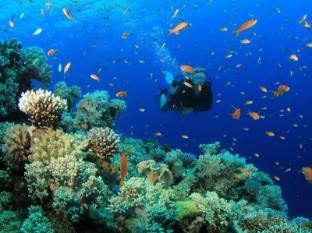 Lanta Pavilion Resort Koh Lanta - Scuba Diving