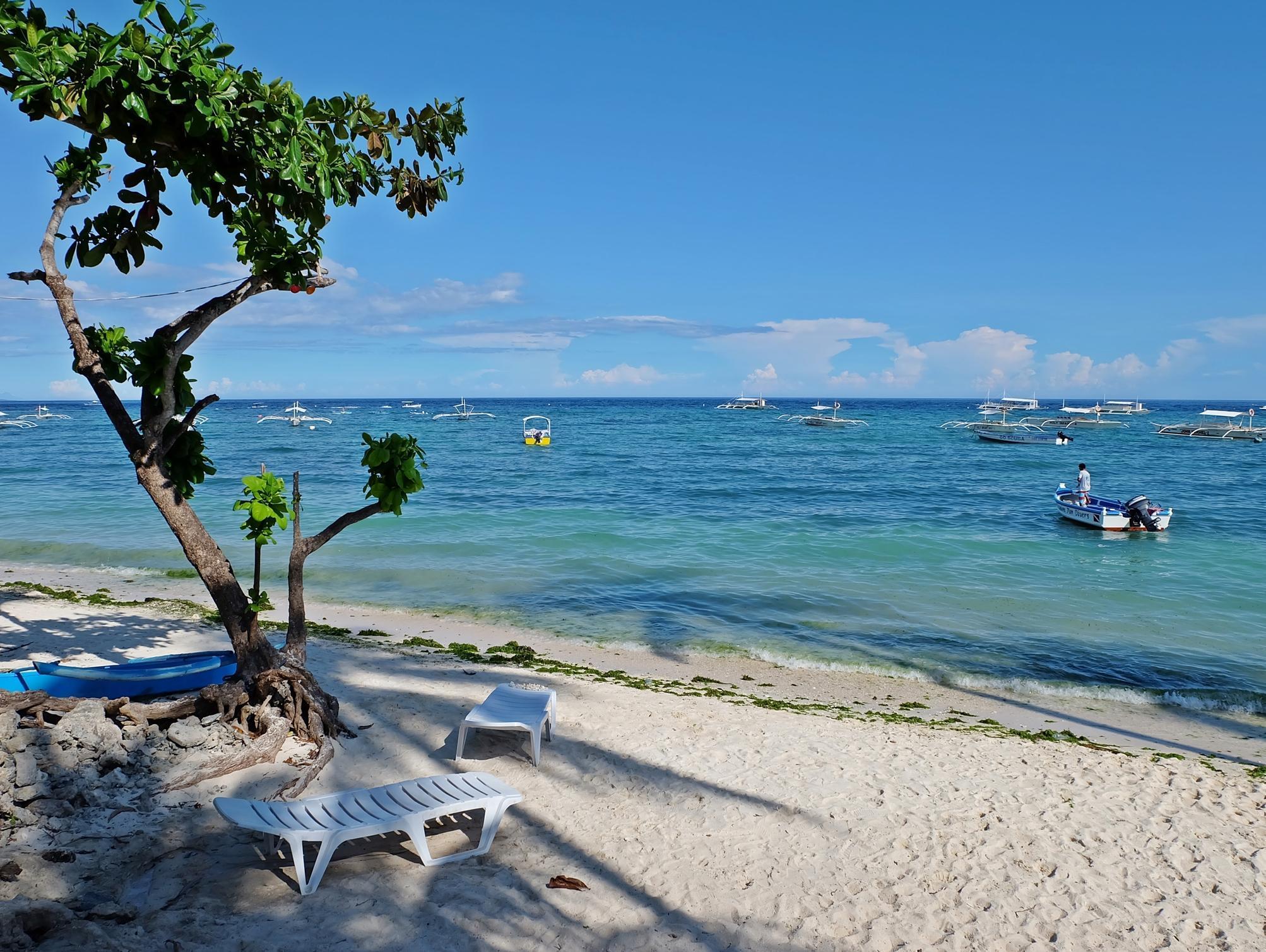 Lost Horizon Beach Dive Resort9