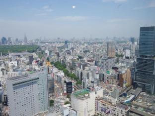 Cerulean Tower Tokyu Hotel Tokyo - Shibuya crossing