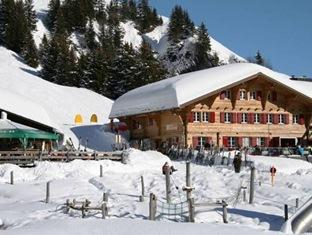 /berghaus-bort-hotel/hotel/grindelwald-ch.html?asq=jGXBHFvRg5Z51Emf%2fbXG4w%3d%3d
