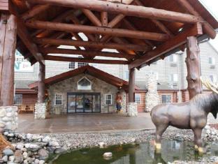 /stoney-creek-hotel-conference-center-la-crosse/hotel/onalaska-wi-us.html?asq=jGXBHFvRg5Z51Emf%2fbXG4w%3d%3d