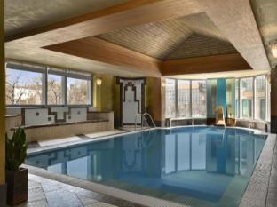 科维努斯凯宾斯基酒店 布达佩斯 - 游泳池
