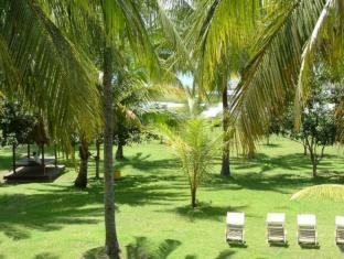 Hotel Hapel Negara Bali - Garden