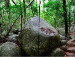 Fitzroy Island Resort Cairns - Rainforest