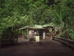 Permai Rainforest Resort | Malaysia Hotel Discount Rates