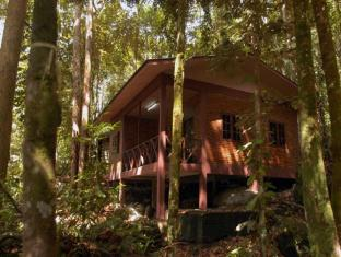 Permai Rainforest Resort Kuching - Cabin