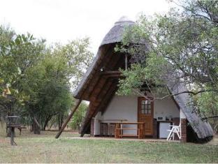/masorini-bush-lodge/hotel/kruger-national-park-za.html?asq=jGXBHFvRg5Z51Emf%2fbXG4w%3d%3d