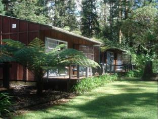 /woodlands-motel-conference-venue/hotel/kerikeri-nz.html?asq=jGXBHFvRg5Z51Emf%2fbXG4w%3d%3d
