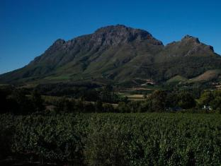 Clouds Wine and Guest Estate Stellenbosch - Mountain Views