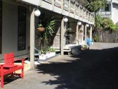 Carrington Motel | New Zealand Budget Hotels