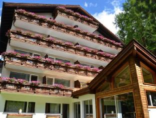 /th-th/hotel-jaegerhof/hotel/zermatt-ch.html?asq=vrkGgIUsL%2bbahMd1T3QaFc8vtOD6pz9C2Mlrix6aGww%3d