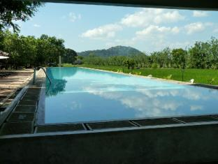 Thilanka Resort and Spa Sigiriya - Pool