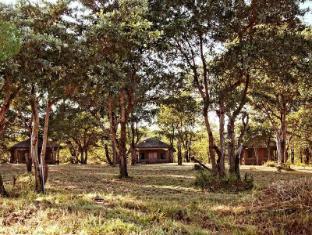 /shindzela-tented-safari-camp-and-walking-safaris-accommodation/hotel/kruger-national-park-za.html?asq=jGXBHFvRg5Z51Emf%2fbXG4w%3d%3d