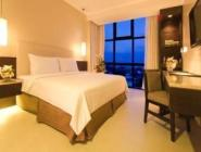 Cameră standard cu 1 dormitor