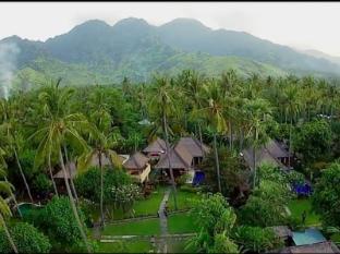 Amertha Bali Villas Bali - Pemandangan