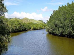 Panglao Regents Park Bohol - Mangrove Forest
