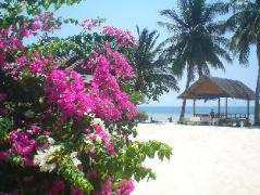 Seaboard Bungalow | Cheap Hotel in Koh Phangan Thailand