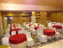 Tulip Inn West Delhi: ballroom