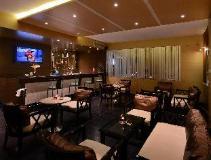 Tulip Inn West Delhi: pub/lounge