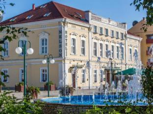 /nelson-hotel/hotel/hajduszoboszlo-hu.html?asq=jGXBHFvRg5Z51Emf%2fbXG4w%3d%3d