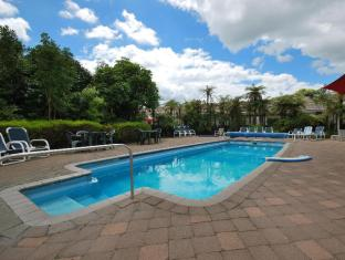 /es-es/alpin-motel-conference-centre/hotel/rotorua-nz.html?asq=vrkGgIUsL%2bbahMd1T3QaFc8vtOD6pz9C2Mlrix6aGww%3d