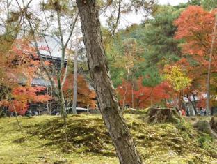 Hotel Vista Premio Kyoto Kawaramachi Kyoto - Attrazioni nelle vicinanze