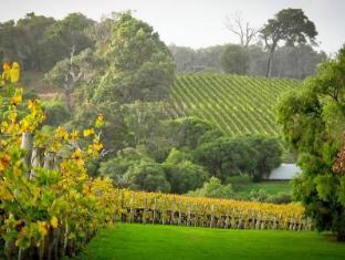 Margaret River Chalets Margaret River Wine Region - Vineyards