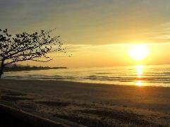 Philippines Hotels   Nitivos Beach Resort