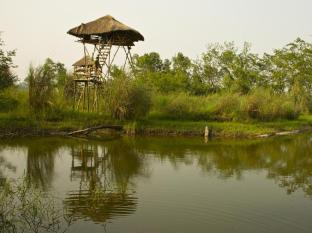 Maruni Sanctuary Lodge Chitwan - Machan & Pond at Lodge