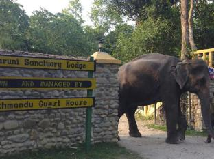 Maruni Sanctuary Lodge Chitwan - vhod