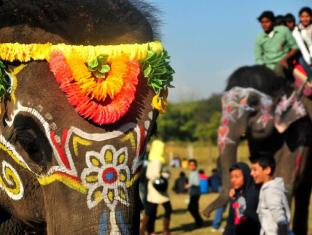 Maruni Sanctuary Lodge Chitwan - Elephant Festival