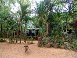 /sam-s-jungle-guesthouse/hotel/sai-yok-kanchanaburi-th.html?asq=jGXBHFvRg5Z51Emf%2fbXG4w%3d%3d