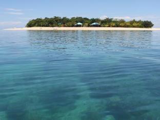 Arena Island