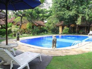Puri Dalem Sanur Hotel Bali - Piscina