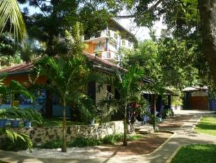 /black-beauty-guesthouse/hotel/unawatuna-lk.html?asq=jGXBHFvRg5Z51Emf%2fbXG4w%3d%3d