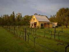 Madigan Vineyard