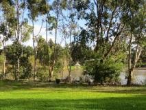 Willy Bay Resort: garden