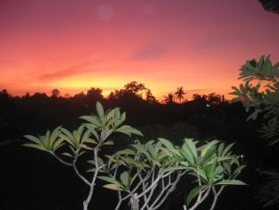 Desak Putu Putera Homestay Balis - Aplinka