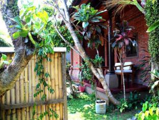Dewa Bungalows Bali - view garden 3