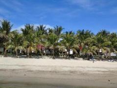 Philippines Hotels   Phaidon Beach Resort