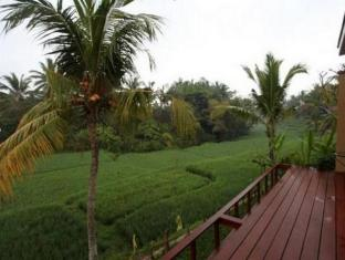 Ubud Green Resort Villas Bali - View