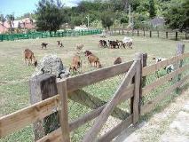Ken-Ting Tuscany Resort: surroundings