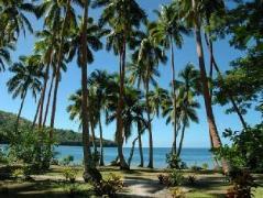 Dolphin Bay Divers Retreat | Taveuni Fiji Hotels Cheap Rates