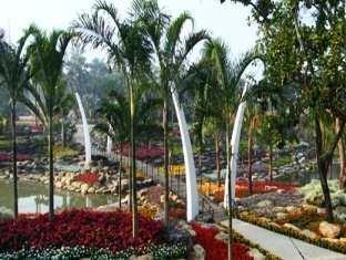 Nongnooch Garden Resort Pattaya - Garden