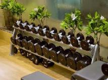 The Suryaa Hotel New Delhi: fitness room