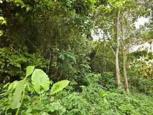 Baan Nitra Guesthouse Phuket - Surroundings