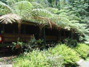 Chambers Wildlife Rainforest Lodges Atherton Tablelands - Exterior