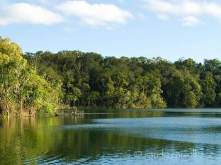 Chambers Wildlife Rainforest Lodges Atherton Tablelands - Nearby Attraction