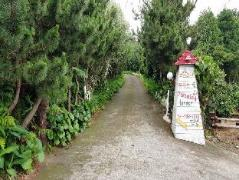Dreaming Forest Pension | South Korea Hotels Cheap